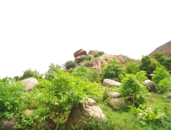 Gabbar Hill Surat